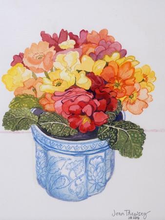 The Multicoloured Primrose 2011