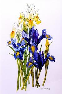 Three Purple and Two Yellow Iris with Buds, 2010 by Joan Thewsey