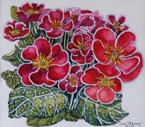 White Edged Primroses 2012 by Joan Thewsey