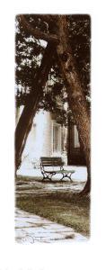 Park Bench by Joane Mcdermott