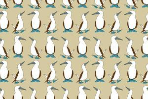 Blue Footed Booby by Joanne Paynter Design