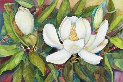 Magnolias in their Prime
