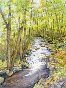 Running Brook by Joanne Porter