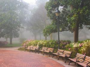 Azaleas Along Brick Sidewalk and Benches at Forsyth Park, Savannah, Georgia, USA by Joanne Wells