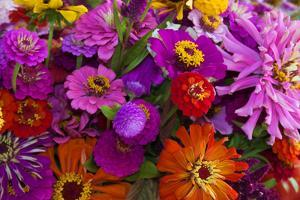 Bouquet of Colorful at a Farmers' Market, Savannah, Georgia, USA by Joanne Wells