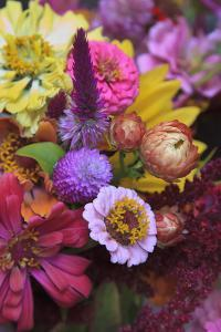 Bouquet of Colorful Flowers at a Farmers' Market, Savannah, Georgia, USA by Joanne Wells