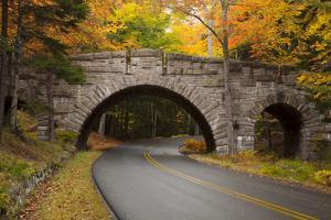 Maine, Acadia National Park, Carriage Road in Acadia National Park by Joanne Wells