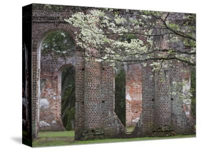 Ruins in the Spring of Old Sheldon Church, South Carolina, Usa