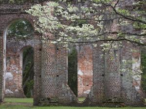 Ruins in the Spring of Old Sheldon Church, South Carolina, Usa by Joanne Wells