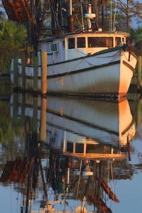 Shrimp Boat Docked at Harbor, Apalachicola, Florida, USA by Joanne Wells