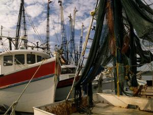 Shrimp Boats Tied to Dock, Darien, Georgia, USA by Joanne Wells