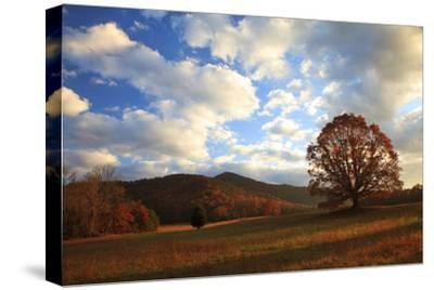 Sunrise in the Fall, Cades Cove, Smoky Mountains NP, Tennessee, USA