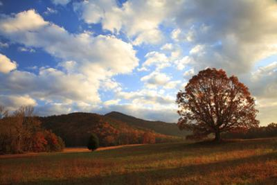 Sunrise in the Fall, Cades Cove, Smoky Mountains NP, Tennessee, USA by Joanne Wells