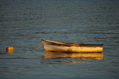 USA, Maine, Small Row Boat Anchored at Bar Harbor