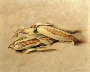 Corn by Joaquin Moragues