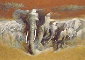 Elephants by Joaquin Moragues