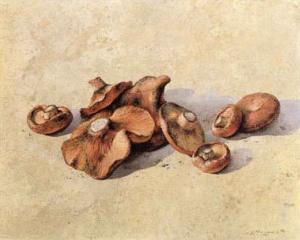 Mushrooms by Joaquin Moragues