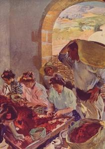 'The Preparation of Dry Grapes', 1890, (c1932) by Joaquin Sorolla y Bastida