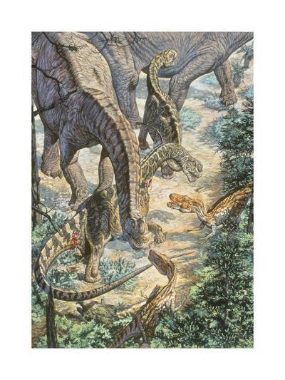 Jobaria Sauropods and Afroventor Raptors of the Mid-Cretaceous Period--Art Print