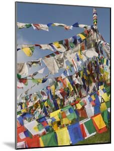 Buddhist Prayer Flags, Mcleod Ganj, Dharamsala, Himachal Pradesh State, India, Asia by Jochen Schlenker