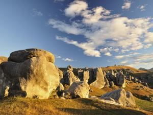 Castle Hill, Canterbury High Country, South Island, New Zealand, Pacific by Jochen Schlenker