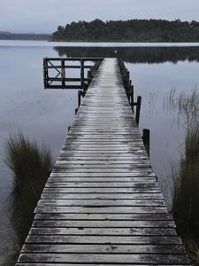 Dock, Shanghai Bay, Lake Mahinapua, West Coast, South Island, New Zealand, Pacific by Jochen Schlenker