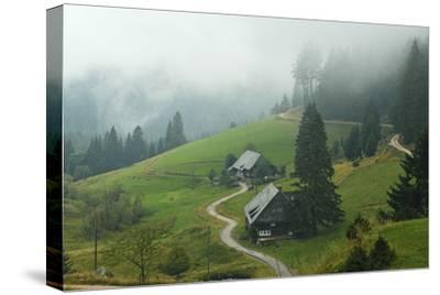 Farmhouses in Fog, Muchenland, Black Forest, Baden-Wurttemberg, Germany, Europe