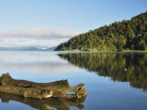 Lake Waikaremoana, Te Urewera National Park, Bay of Plenty, North Island, New Zealand, Pacific by Jochen Schlenker