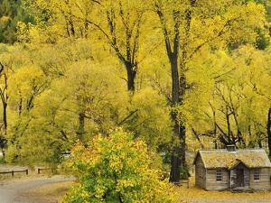 Miner's Cottage, Arrowtown, Otago, South Island, New Zealand, Pacific by Jochen Schlenker