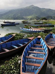 Phewa Tal (Phewa Lake), Pokhara, Gandaki, Western Region (Pashchimanchal), Nepal, Asia by Jochen Schlenker