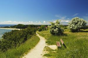 Rural Scene Near Thiessow by Jochen Schlenker