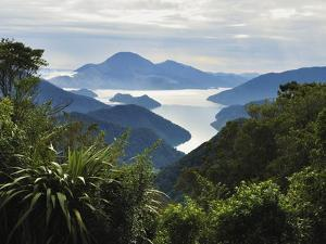 Tennyson Inlet, Marlborough Sounds, Marlborough, South Island, New Zealand, Pacific by Jochen Schlenker