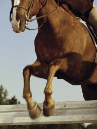 https://imgc.artprintimages.com/img/print/jockey-and-a-horse-jumping-over-a-hurdle_u-l-q10rw2g0.jpg?p=0