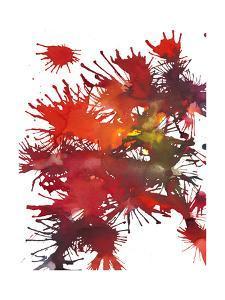 Fireworks Display II by Jodi Fuchs