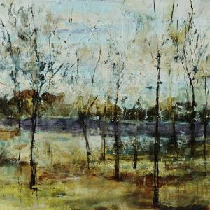Ghost Lake by Jodi Maas