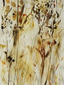 Gold Dawn Field II by Jodi Maas