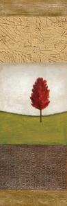 Autumn Light II by Jodi Reeb-myers