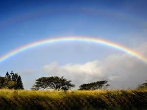A Double Rainbow Above Countryside by Jody Miller