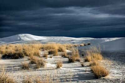 Barren Desert Landscape with Grasses under a Blue Sky