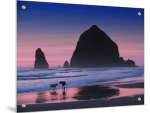 Dogs on Cannon Beach by Jody Miller