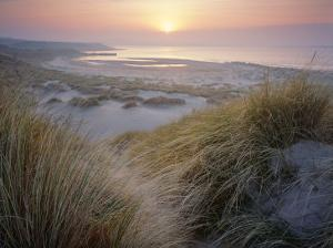 Image result for North Norfolk dunes with misty sunset