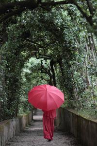 A Woman in a Red Dress with a Red Umbrella Walking in an Arcade of Arching Trees by Joe Petersburger