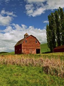 A Ride Through the Farm Country of Palouse, Washington State, USA by Joe Restuccia III
