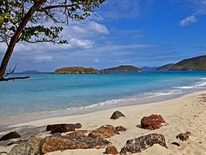 Cinnamon Bay on the Island of St. John, Us Virgin Islands by Joe Restuccia III