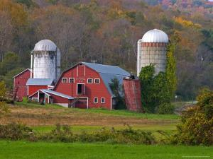 Farm Landscape in Fall Color, Arlington, Vermont, USA by Joe Restuccia III