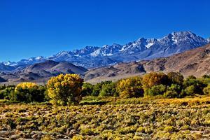 Mountain Landscape Along Hwy 395, California, USA by Joe Restuccia III