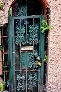 Old French Door, New Orleans, Louisiana, USA by Joe Restuccia III