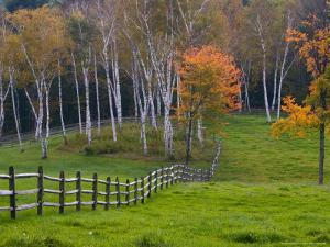 Rural Landscape, East Arlington, Vermont, USA by Joe Restuccia III