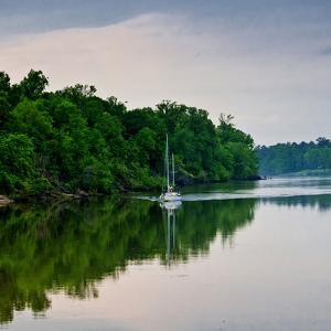Sailboat Sailing Down the Tombigbee River in Mississippi, USA by Joe Restuccia III