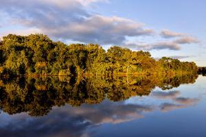 Shoreline of the Erie Canal in Fultonville, New York, USA by Joe Restuccia III